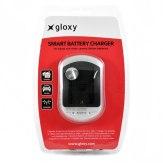 Chargeur Sony BC-QM1 Compatible 2 en 1 Maison et Voiture